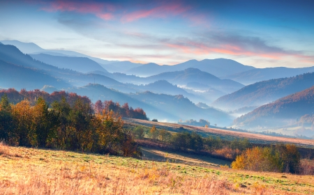 Colorful autumn morning  in the mountains.  Stok Fotoğraf