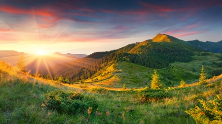 Beautiful summer landscape in the mountains. Sunrise Фото со стока