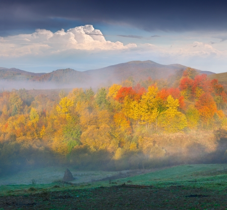 Foggy autumn landscape in the mountains photo