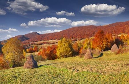 Panorama of the autumn mountains.  photo