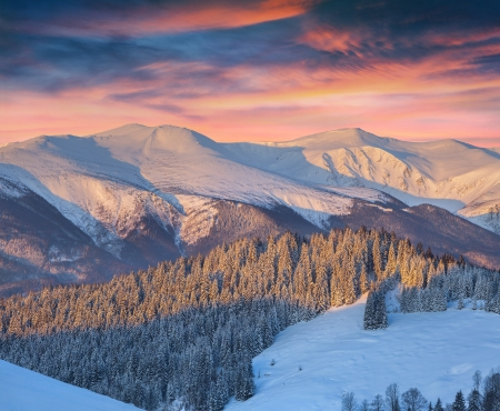 Colorful winter landscape in mountains. Sunrise.