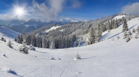 Beautiful winter landscape in the Carpathian mountains  Ukraine, Europe