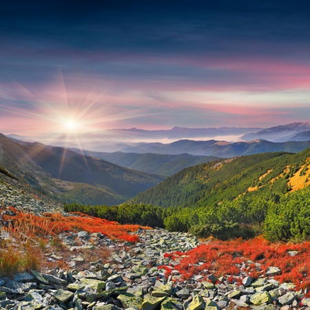 Colorful autumn morning in the mountains  Sunrise