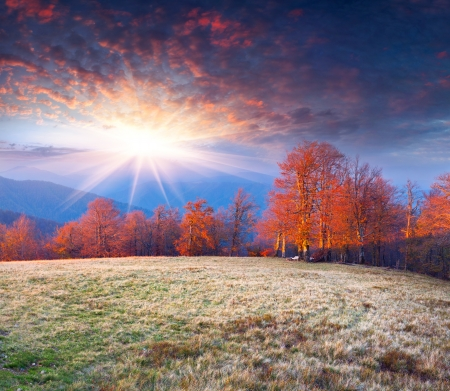 november: Colorful autumn morning in the mountains. Sunrise Stock Photo