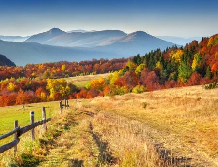 산에서 다채로운 가을 풍경