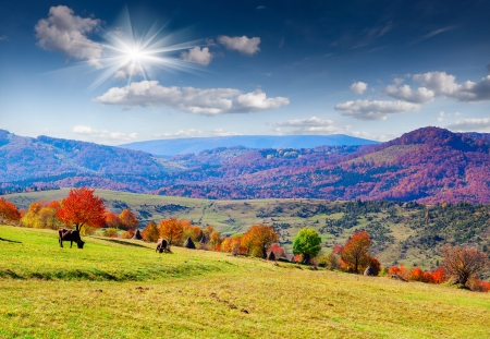 Colorful autumn panorama of the mountains photo