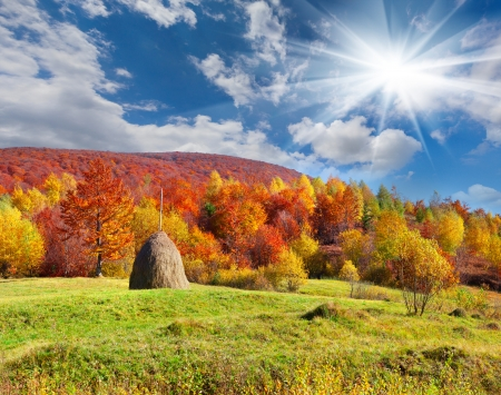 Colorful autumn landscape in the mountains. photo