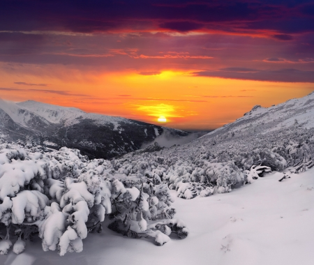 Mystical winter evening in the  mountains