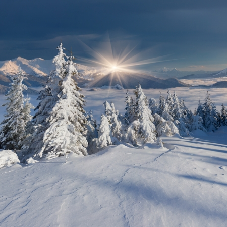 Beautiful morninglandscape in the mountains in winter