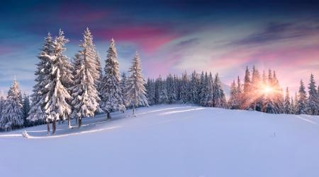 山の冬の日の出のパノラマ