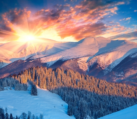 산에서 다채로운 겨울 일출. 스톡 콘텐츠