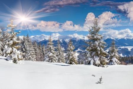 산에서 아름 다운 겨울 풍경 스톡 콘텐츠