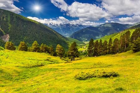 svaneti: Paisaje colorido del verano en las monta�as del C�ucaso. Alto Svaneti, Geaorgia.