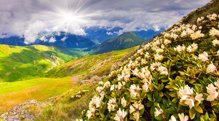 svaneti: Alpine meadows in the Caucasus mountains. Upper Svaneti, Georgia, Europe. Stock Photo