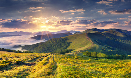 Beautiful summer landscape in the mountains.  photo