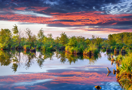Colorful summer morning on the river photo