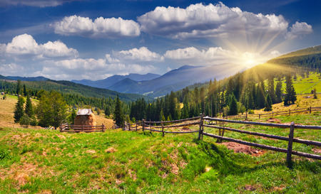 Beautiful summer landscape in the mountains at summer Stock Photo - 27086985