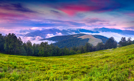 Colorful summer landscape in the Carpathian mountains. Sunrise photo