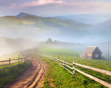 산 마을에있는 아름 다운 여름 풍경입니다. 안개 낀 아침