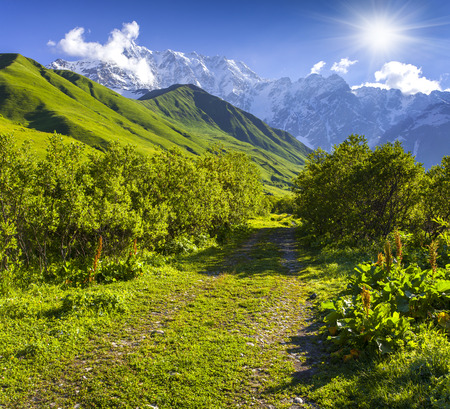svaneti: Alpine meadows at the foot of Tetnuldi glacier, Chkhutnieri pass. Upper Svaneti, Georgia, Europe. Caucasus mountains. Stock Photo