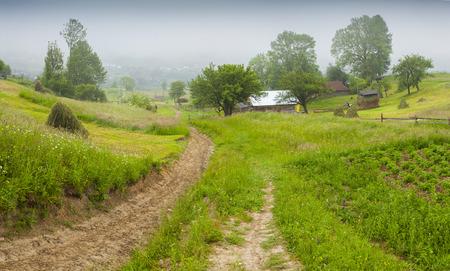 haymaking: Haymaking in a Carpathian village. Ukraine, Europe.  Stock Photo