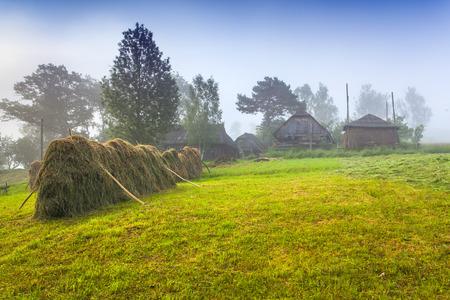 haymaking: Haymaking in a Carpathian village.