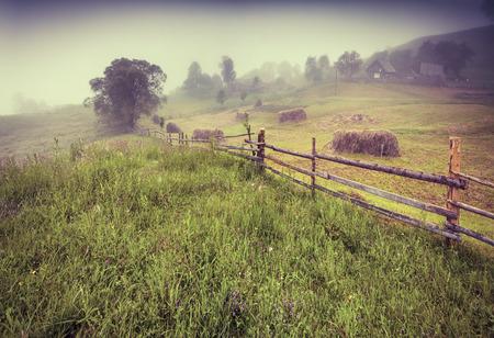 haymaking: Haymaking in a Carpathian village. Retro style.