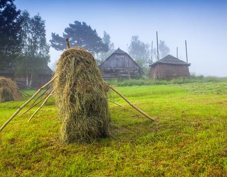 haymaking: Haymaking in a Carpathian village. Ukraine, Europe. Geolocation 48.288076,24.397523
