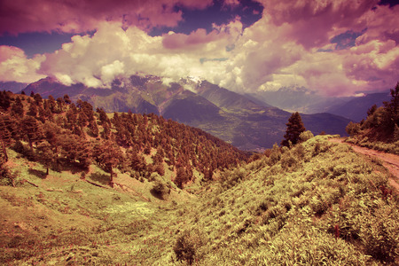 Alpine meadows in the Caucasus mountains. Upper Svaneti, Georgia, Europe. Retro style. photo