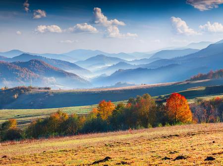 luz natural: Panorama colorido de oto�o de las monta�as. Foto de archivo