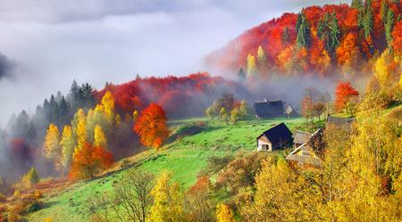 山の村でカラフルな秋の風景。カルパティア山脈の霧の朝。Sokilsky リッジ、ウクライナ、ヨーロッパ。