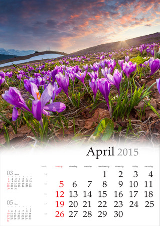 2015 Calendar. April. Blossom fild of the crocuses in the mountains