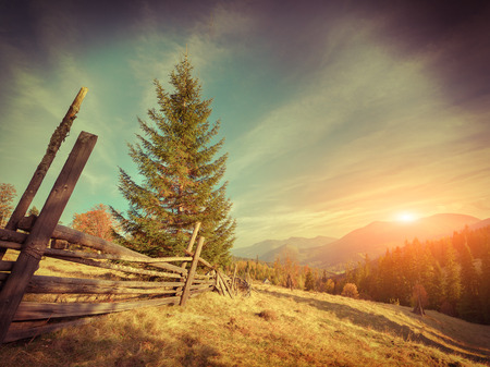 carpathian mountains: Sunny autumn landscape in the mountains. Retro style. Stock Photo