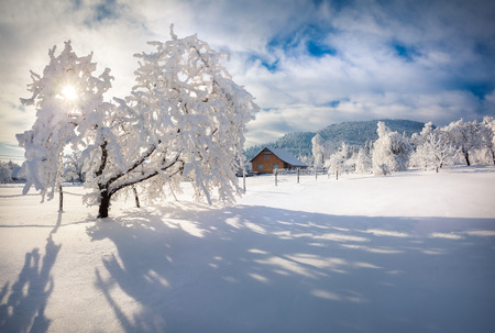Winter morning in the Carpathian village. Sunny winter morning. Retro style. photo