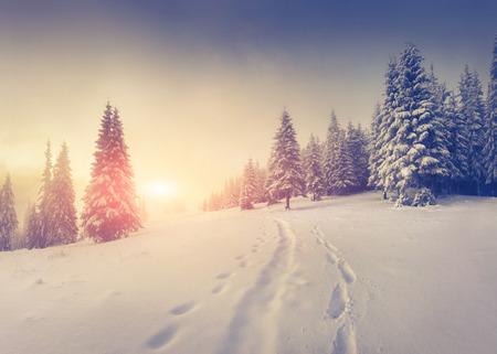 Brumoso amanecer de invierno en las montañas. Foto de archivo