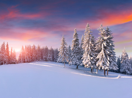 wintry landscape: Colorful winter sunrise in the mountains Stock Photo