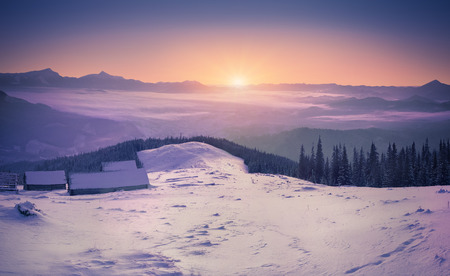 sunset tree: Colorful winter sunrise in the mountains Stock Photo