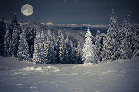 Beautiful winter landscape in the mountains at night with stars and moon