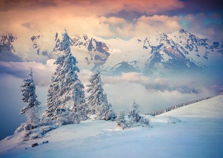 hristmas: Colorful winter sunrise in the foggy mountains Stock Photo