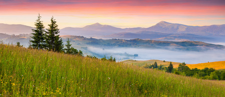 Foggy summer panorama of the Carpathian mountains. photo