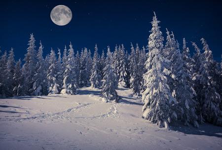星と満月との夜に山の美しい冬の風景