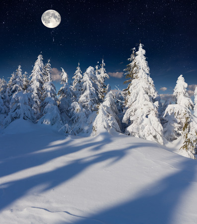 Beautiful night winter landscape in the mountains with the stars and full moon. photo