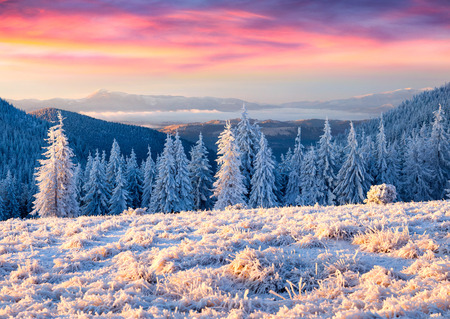 snow white: Beautiful winter sunrise in the mountains Stock Photo