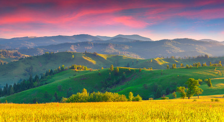 panorama view: Colorful summer sunrise in the Carpathian mountains with rolling hills and valleys in golden morning light Stock Photo