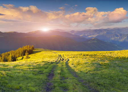 carpathian mountains: Colorful summer sunset in the Carpathian mountains. Ukraine, europe.