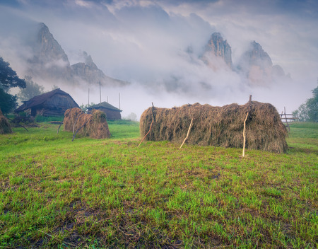 haymaking: Haymaking in mountain village. Foggy summer morning. Stock Photo