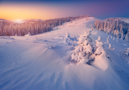 winter forest: Colorful winter sunrise in the mountains Stock Photo