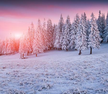 山の美しい冬の日の出。