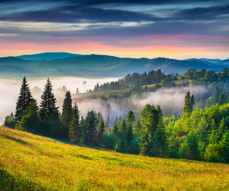 Colorful summer sunrise in the Carpathian mountains. photo