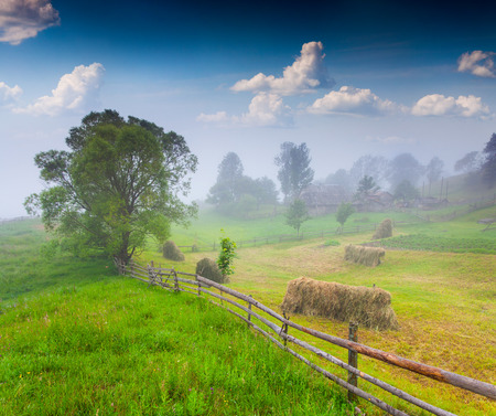 haymaking: Foggy morning in the mountain village. Stock Photo